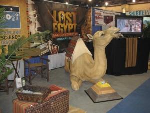 Sarah the Camel